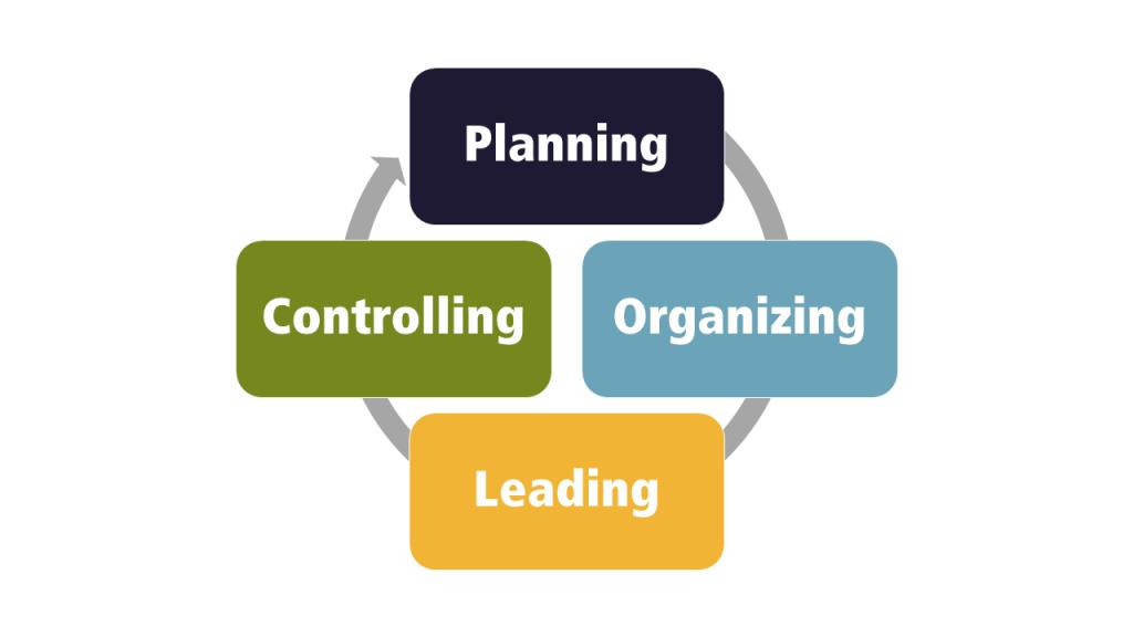 Exemplu 6.1 Ciclul domeniilor funcționale cheie ale organizației